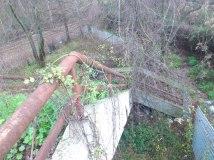 La vegetazione e' annodata al corrimano (...), e ci sono rampicanti dall'alto. S'intravede la fine della rampa. — presso Stazione Monte Antenne.