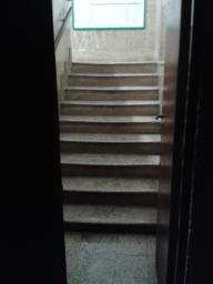 Terza rampa: superato il portoncino (spesso graziosamente aperto per metà) e gli ultimi 9 perigliosi gradini...