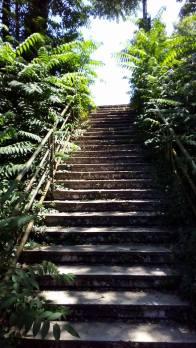 Stazione Acqua Acetosa - scalinata